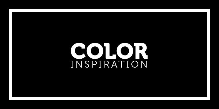 Jawor Parkiet – Color Inspiration